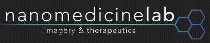 Logo nanomedecine